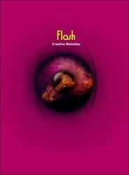 Flash 眩目-cover