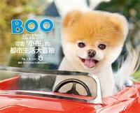 BOO可愛「小布」的都市生活大冒險 (BOO LITTLE DOG IN THE BIG CITY)